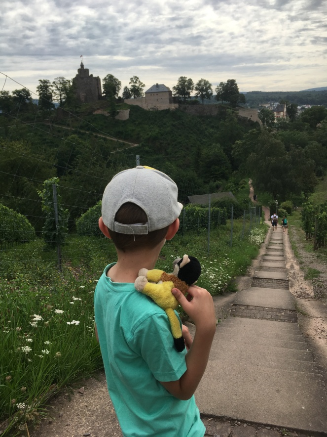 Things Helen Loves, Boy looking across the vineyards to a castle ruin