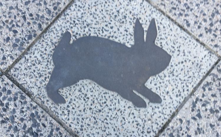 Things Helen Loves, rabbit silouhette on the ground in Berlin