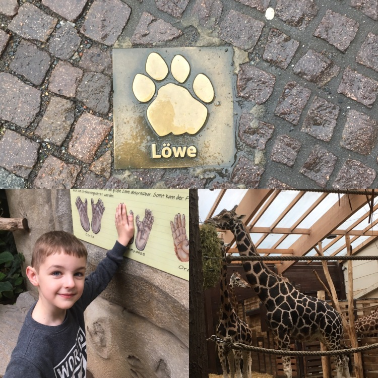 Things Helen Loves, images from Leipzig zoo