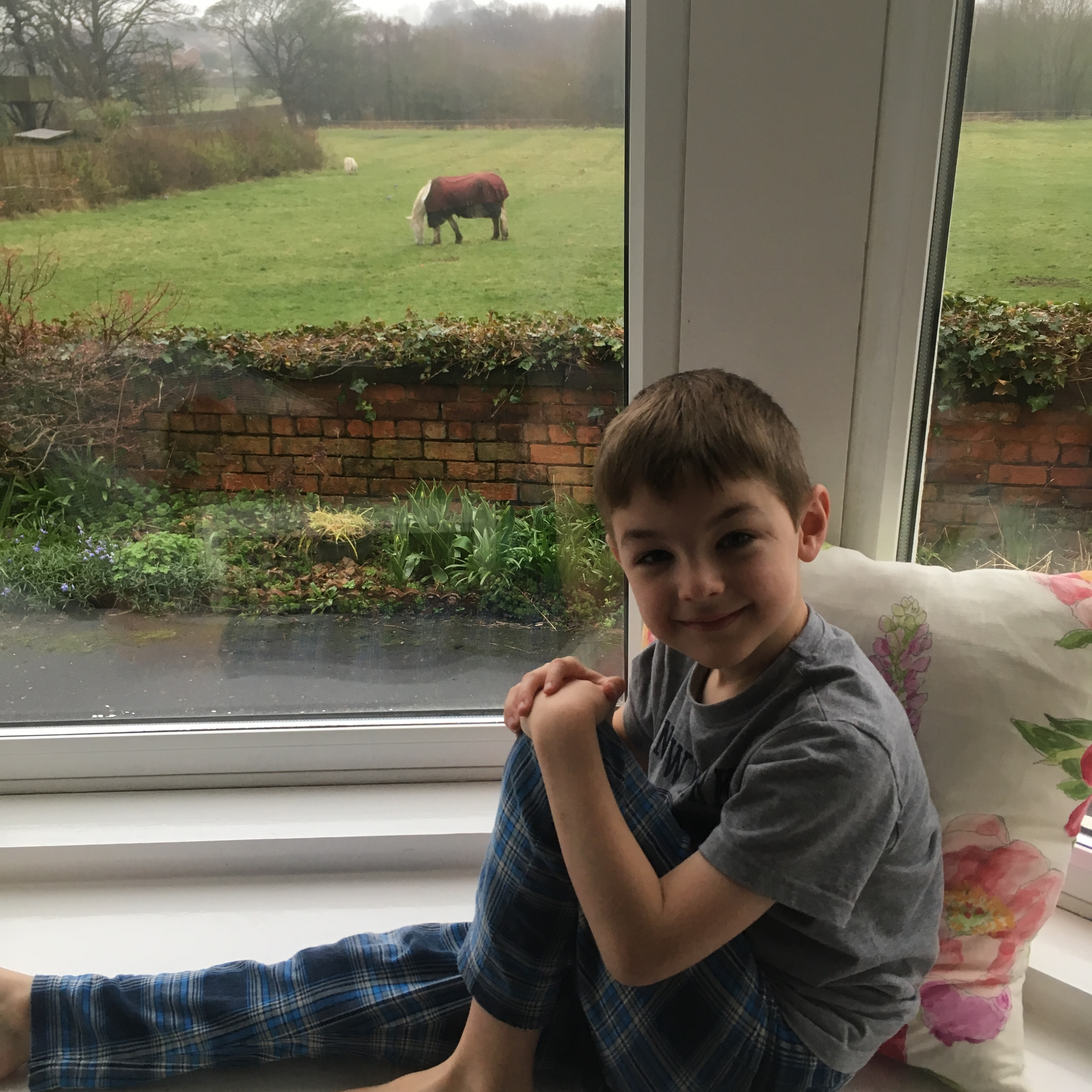Things Helen Loves, boy on window seat with fields and horses in background