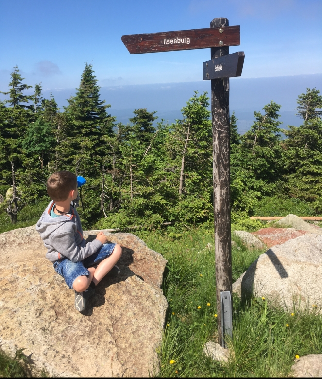 Things Helen Loves, boy itting by sign on mountainside taking in views with binoculars.