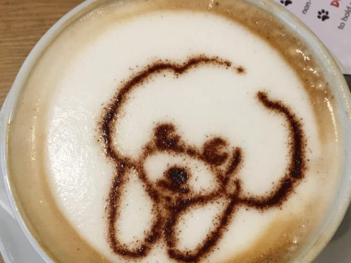 Things Helen Loves, Coffee decorated with dog image