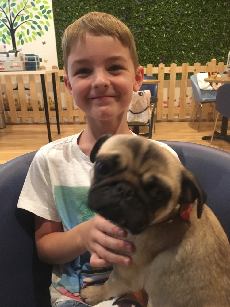 Things Helen Loves, picture of boy with pug on his lap