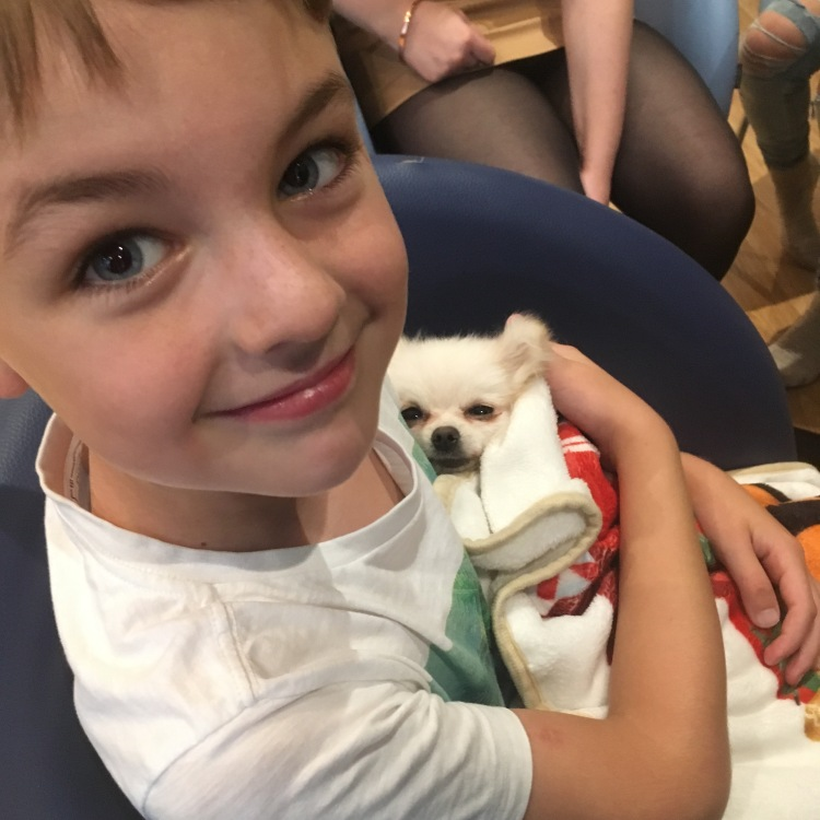 Things Helen Loves, boy holding small white dog