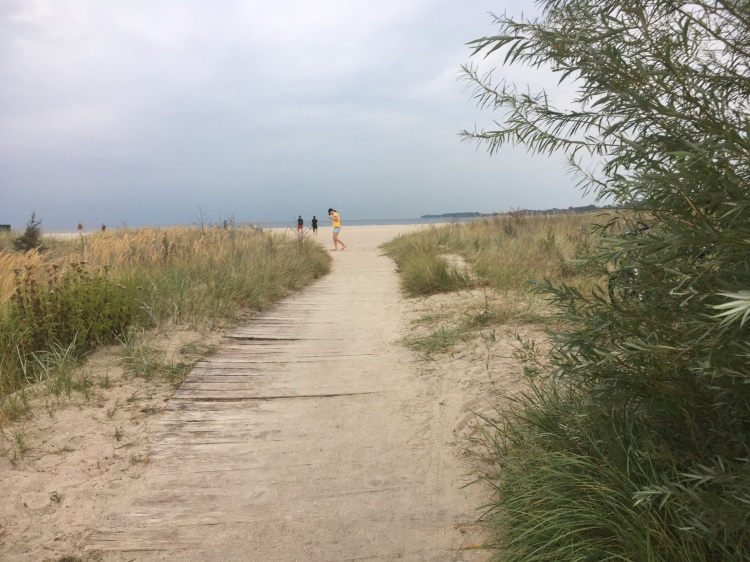 Things Helen Loves, sandy path to the beach fringed with beach grass