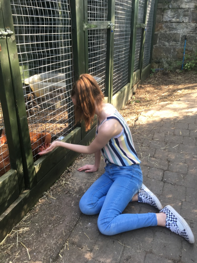 Things Helen Loves, image of girl feeding hens