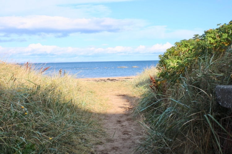 Things Helen Loves pathway through the dunes to sandy beach
