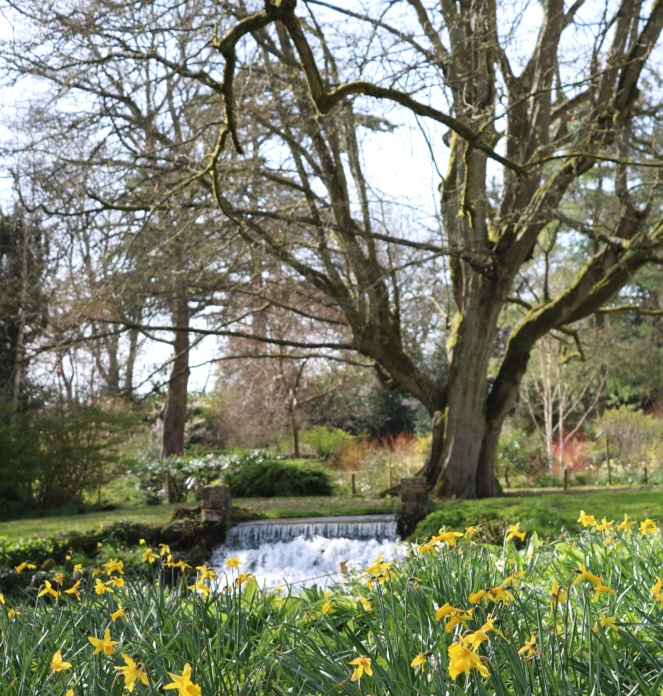 Things Helen Loves , garden views at Mottisfont House