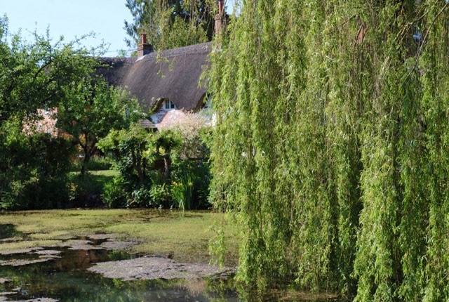 Things Helen Loves, image of duck pond and thatched cottage in the background