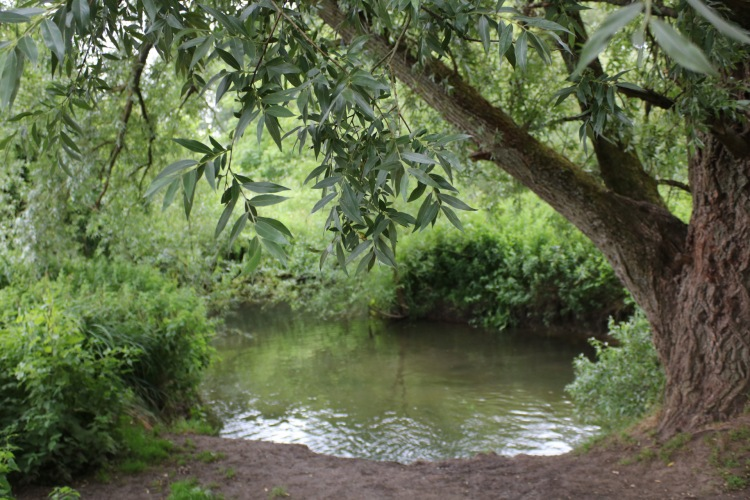 Things Helen Loves, riverside views